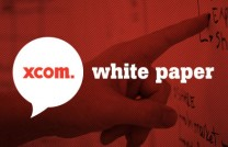 White Paper: Big Data